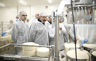 Премьер-министр присутствовал на церемонии открытия завода по производству сыра и других молочных продуктов