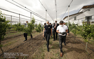 PM gets acquainted with agricultural activities and intensive orchards establishment programs in Ararat Marz